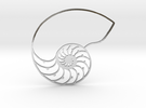 Nautilus in Polished Silver