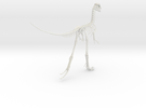 Compsognathus Skeleton (over 2-feet long)  in White Strong & Flexible