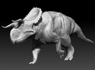 Nasutoceratops 1:40 scale model in White Strong & Flexible