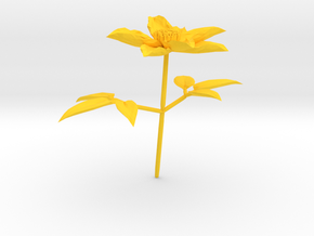 Clematis in Yellow Strong & Flexible Polished