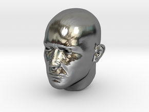 1/4 scale Highly detailed head figure Tete visage  in Polished Silver