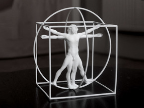 Vitruvian Man  in White Strong & Flexible