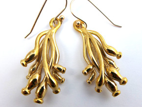 Ascilla earrings in Polished Bronze