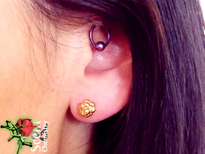 Camphor Ear Studs in 18k Gold Plated