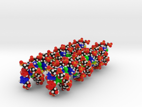 DNA Molecule Model Customized, 2 sequences in Full Color Sandstone
