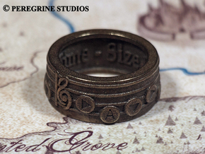 Ring - Song of Time (Size 13) in Stainless Steel