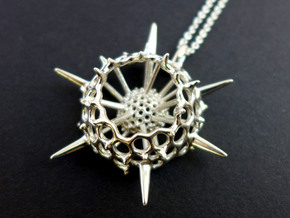 Spumellaria Pendant in Polished Silver