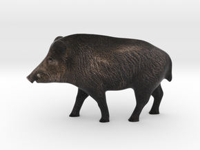 Realistic Eurasian Wildboar in Full Color Sandstone