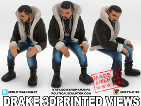 3D Drake Views LG in Full Color Sandstone