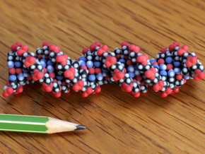 CPK colored DNA model in Full Color Sandstone