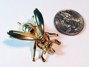 Yellow Jacket Pendant in Polished Brass