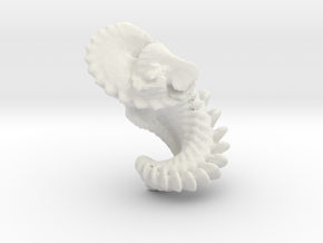 shell001 in White Strong & Flexible
