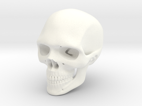 Realistic Human Skull (40mm H) in White Strong & Flexible Polished
