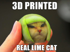 Lime Cat internet meme in Full Color Sandstone