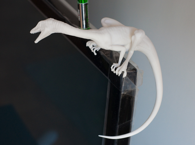 Compy dinosaur desktop figurine 3d printed Showing tail