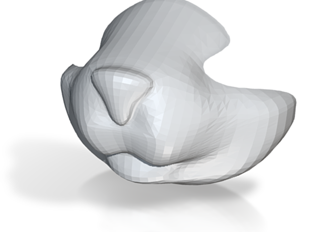 Cat Nose - In Production 3d printed