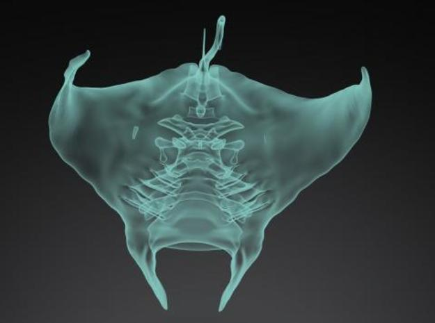 Manta Ray pendant 3d printed Description