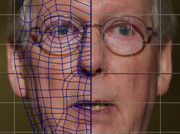 Small- Sen. Mitch McConnell (R-Ky.) Turtle Inactio 3d printed