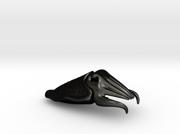 Cuttlefish Bottle Opener 3d printed