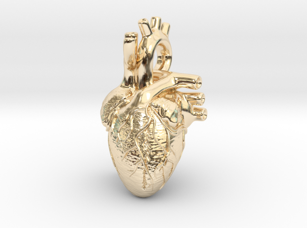 Anatomical Heart Pendant 3d printed