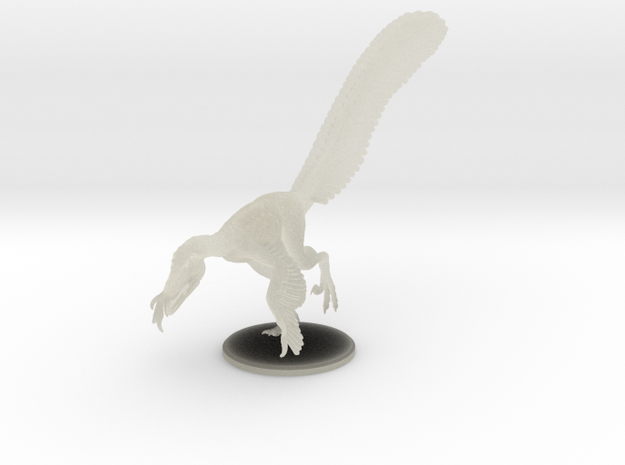 Male Velociraptor (1:12 scale hollow) 3d printed