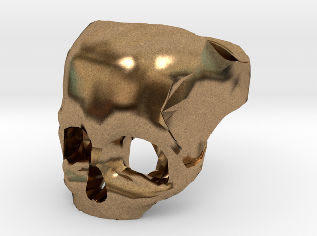 Brass Skull Ring by Bits to Atoms 3d printed