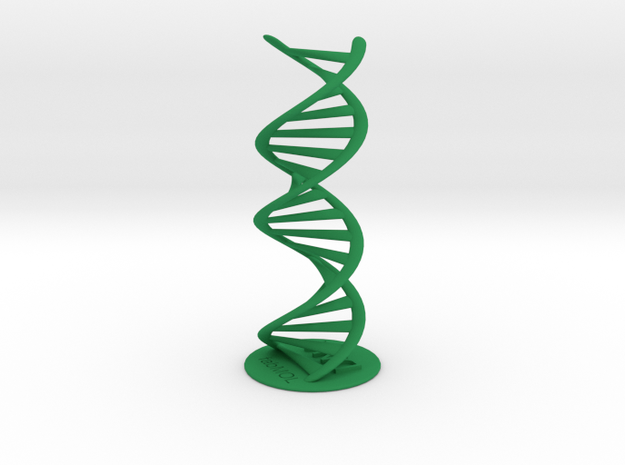 DNA double helix with stand (schematic) 3d printed