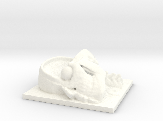 Human Head Section 3d printed