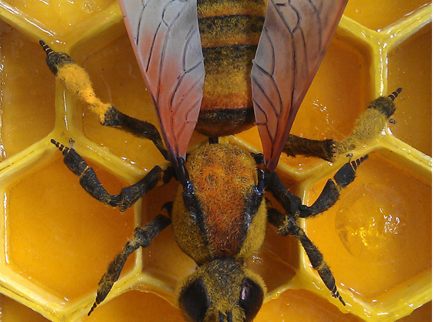 Articulated Honey bee 3d printed Wings come separate