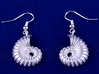 Nautilus Shell Earrings 3d printed Add a caption...