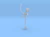 Fiji Mermaid Skeleton 3d printed