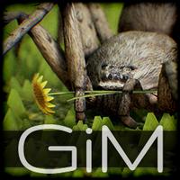GiM_GamesInMotion