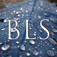 BLS_Jason
