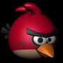 r3dbird