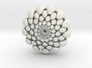 chrysanthemum -kiku- in White Strong & Flexible