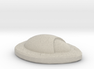 DomeFossil in Sandstone