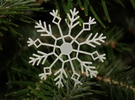 Frozen Snowflake in Frosted Ultra Detail
