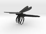 DragonflyGrasping