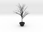 Wierd Tree
