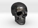 1/24  Human Skull Crane Schädel че́реп