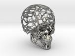 Human Skull - Wireframe design