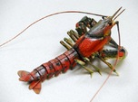 Articulated Crayfish