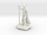 Xeno Borellis, Wilden Druid with Staff and Cloak
