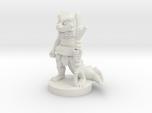 Young Dragonborn Druid