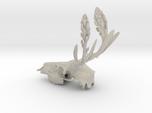 Rite of Spring- Deer Skull