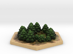 Catan_forest_hexagon