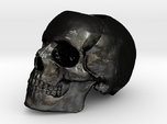 Yorick Skull Candle Holder