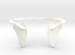 "Shoulder Blade & Collar Bone ""Winged"" Pendant"