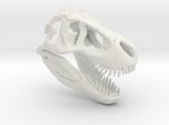 Tyrannosaurus Dinosaur Skull - T-Rex Skull 1:40