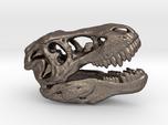 Tyrannosaurus rex skull - 40mm